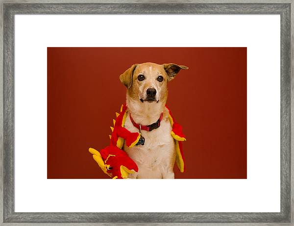 Abbie And Dragon Toy Framed Print