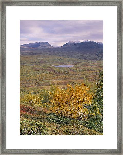 Abisko Nationalpark Framed Print