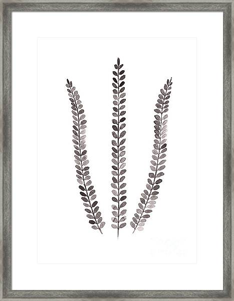 Abstract Fern Watercolor Art Print Painting Framed Print