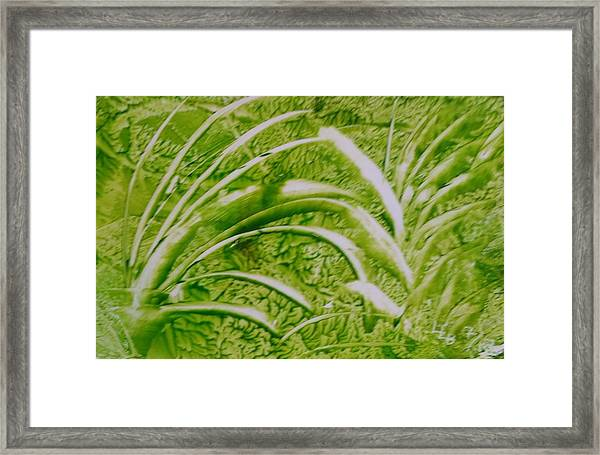 Abstract Green And White Leaves And Grass Framed Print