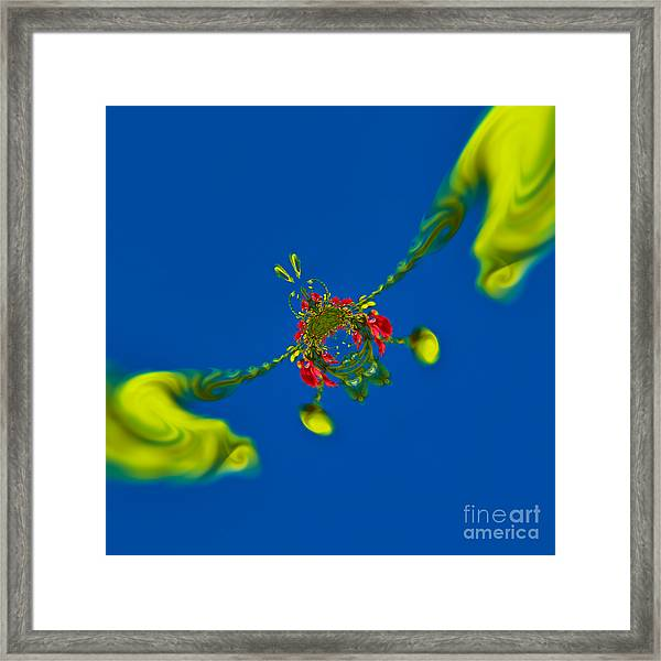 Abstract Lobster 9137205141 Framed Print