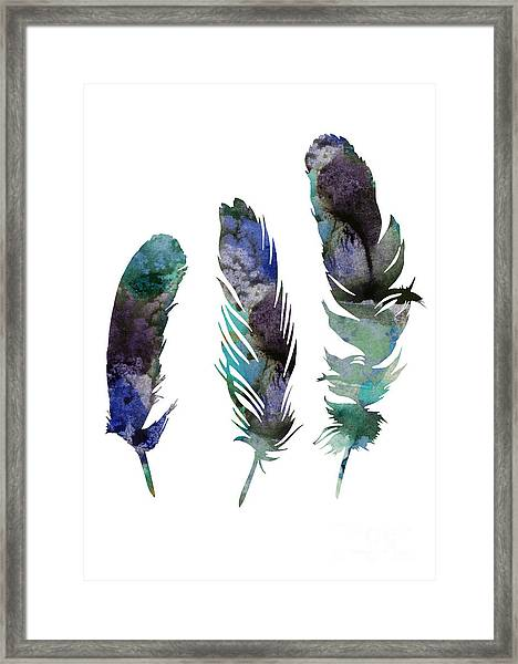 Abstract Three Feathers Watercolor Painting Framed Print