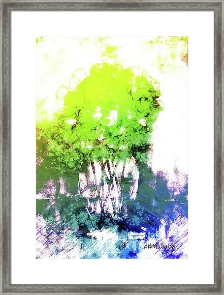 Abstract Trees In The Everglades Framed Print