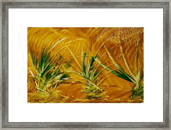 Abstract Yellow, Green Fields   Framed Print