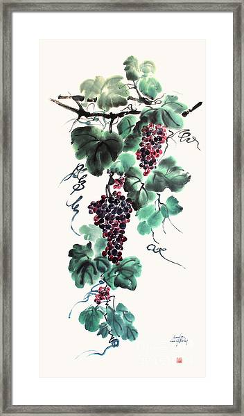 Abundant Grapes Framed Print by Nadja Van Ghelue