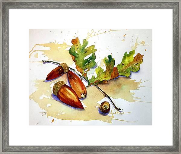 Acorns And Leaves Framed Print