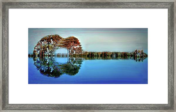 Acoustic Guitar At Gordon's Pond Framed Print