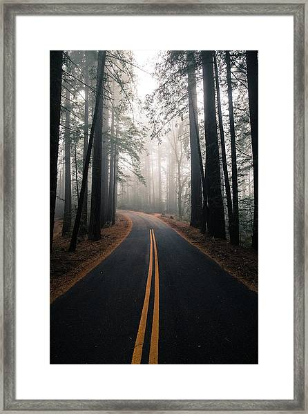 Framed Print featuring the photograph Across The Forest by Matthew Ronder-Seid