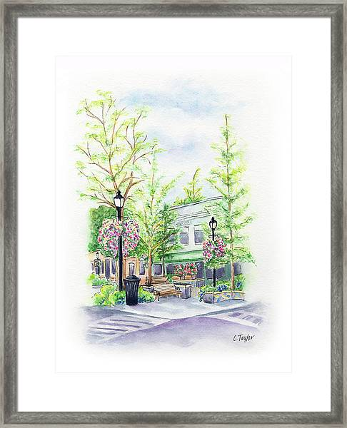Across The Plaza Framed Print