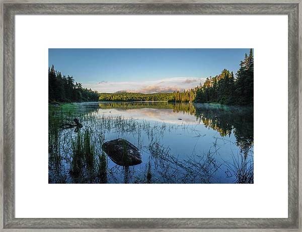 Adirondack Wild Framed Print