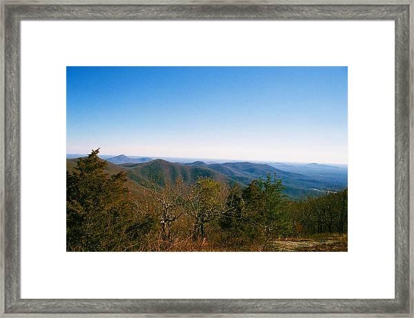 Admire Framed Print