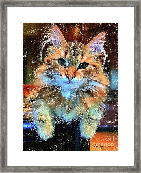 Adopted Framed Print