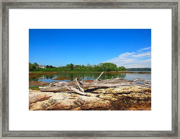 Adrift In Maine Framed Print
