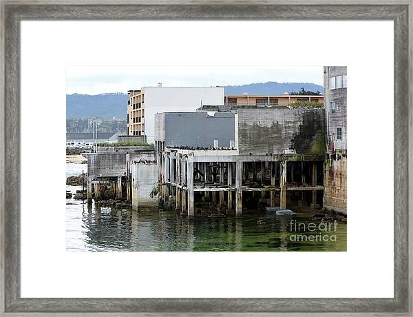 Aeneas Ruins In Springtime At Cannery Row Framed Print