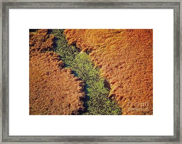 Aerial Farm Stream Lillies  Framed Print