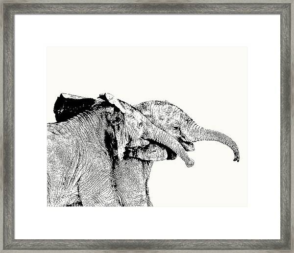 Affectionate Young Elephant Pair Framed Print