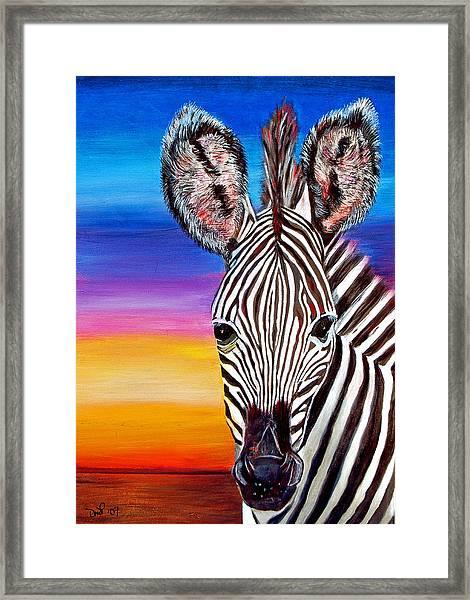 African Zebra Aura Framed Print