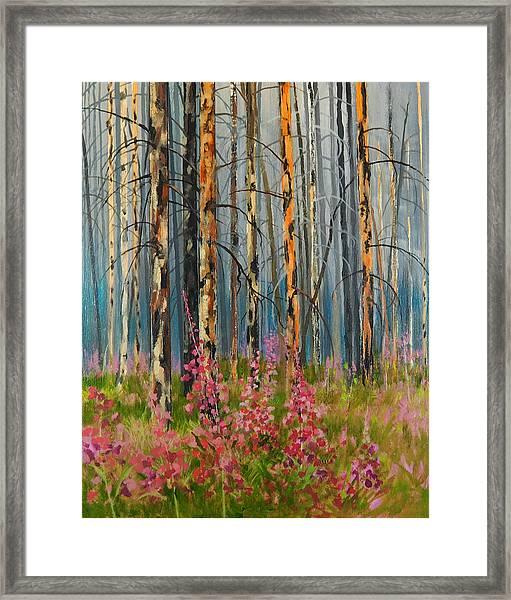 After Forest Fire Framed Print