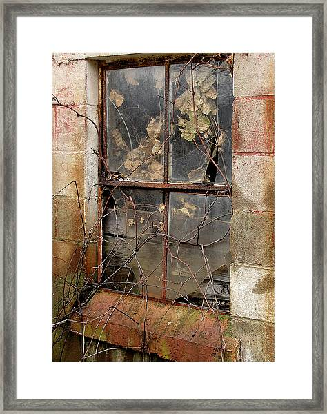 After The Flood Framed Print