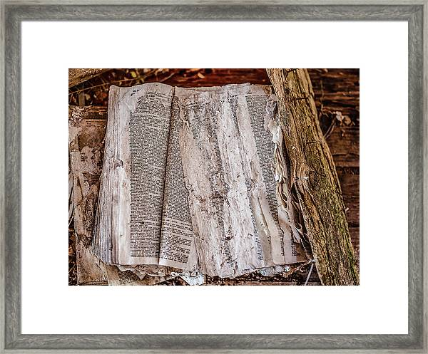 Framed Print featuring the photograph After The Storm by Scott Cordell