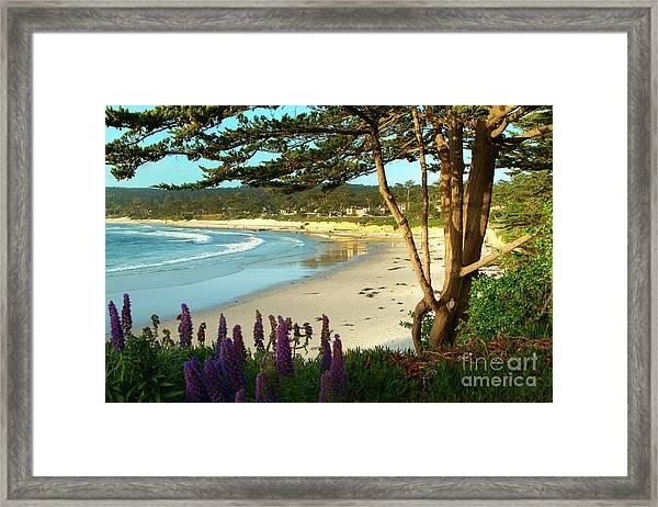 Afternoon On Carmel Beach Framed Print