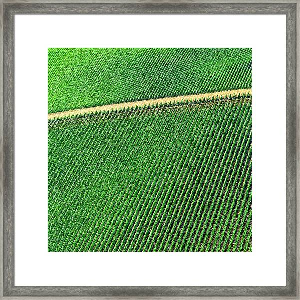 Ag Road Framed Print