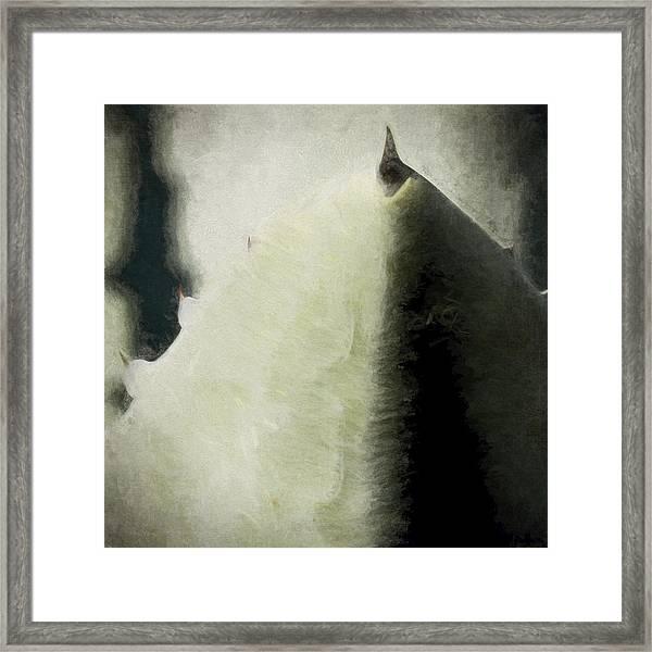 Agave Impression Four Framed Print