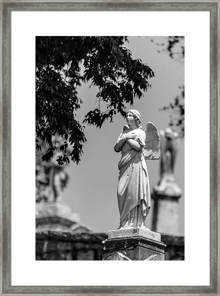 Aggelos Framed Print