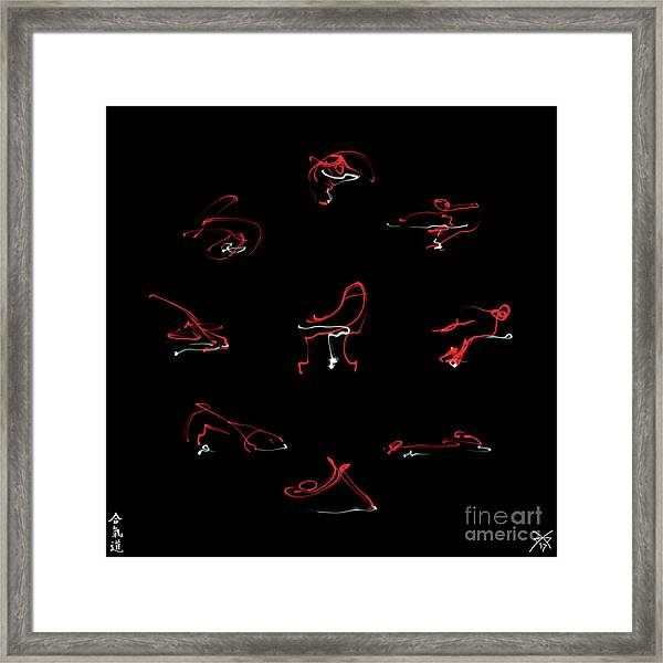 Aikido -9 Basic Techniques Framed Print