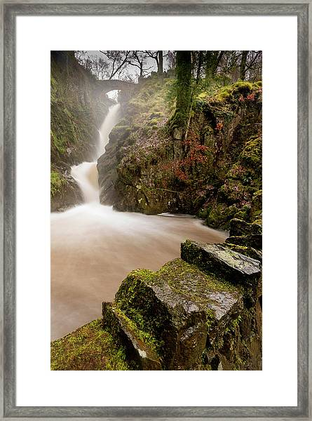 Aira Force High Water Level Framed Print