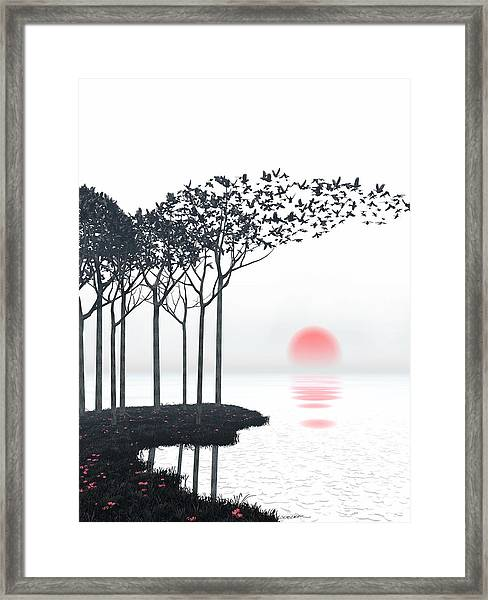 Aki Framed Print