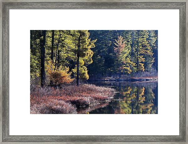 Algonquin Sunrise Reflection Framed Print