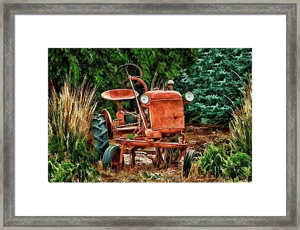 Alice Chalmers Framed Print
