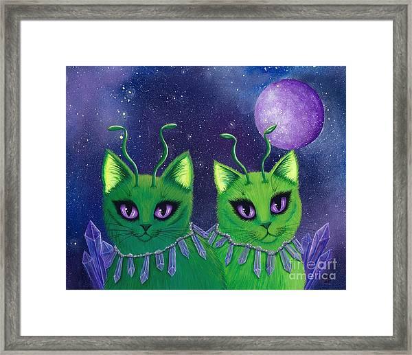 Alien Cats Framed Print