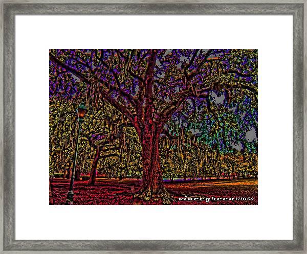 Alive Oak Framed Print