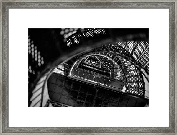 All The Way To The Top Framed Print