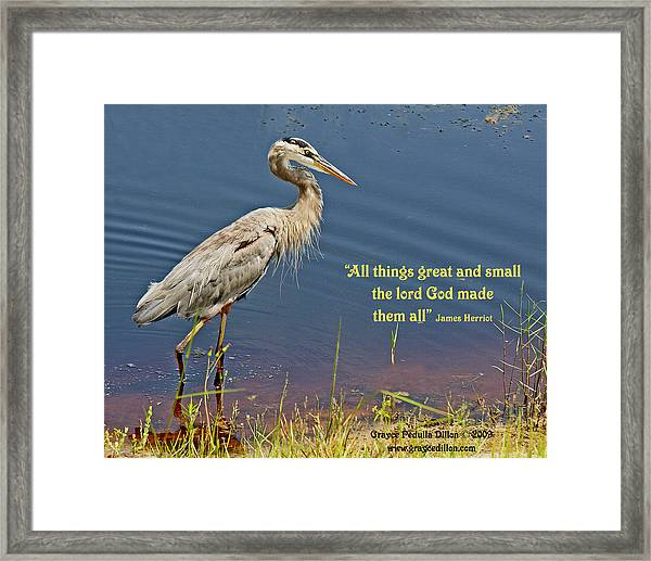 All Things Great And Small Framed Print