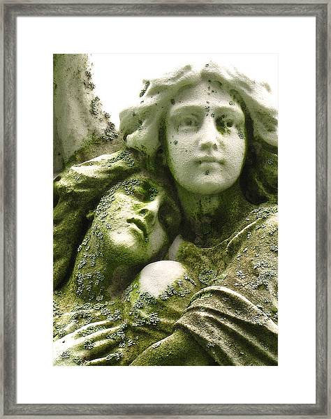 Allegorical Theory Framed Print