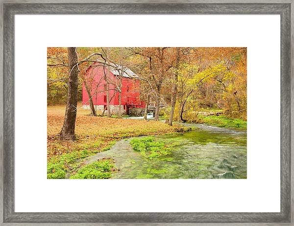 Alley Spring Framed Print