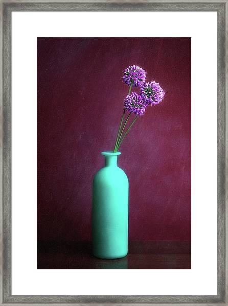 Allium Medusa Flower Framed Print