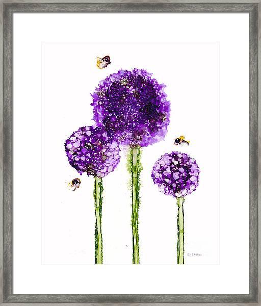 Alliums Humming Framed Print