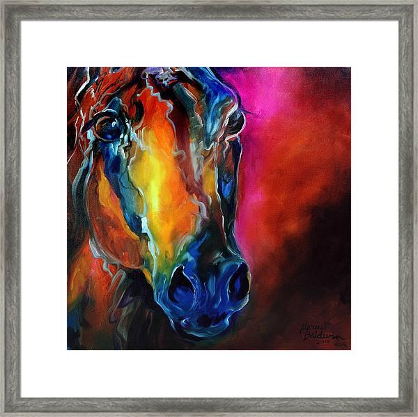 Allure Arabian Framed Print