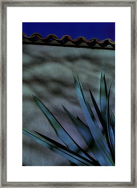 Aloe Cool Framed Print
