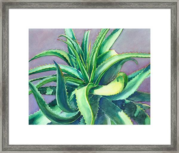 Aloe Vera Watercolor Framed Print