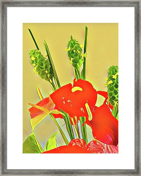 Aloha Bouquet Of The Day -- Red Anthuriums With Green Ginger, A Portion  Framed Print