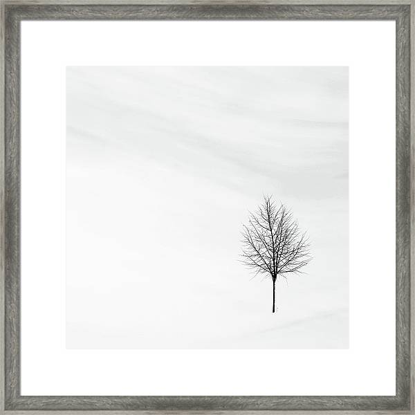 Alone In The Storm Framed Print