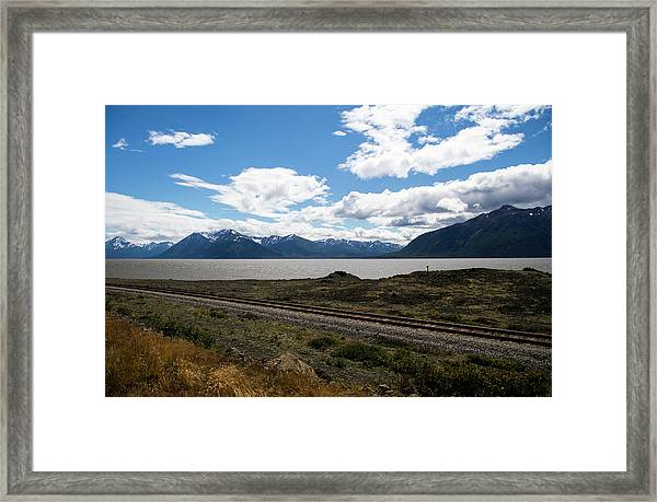 Along Beluga Cove Framed Print