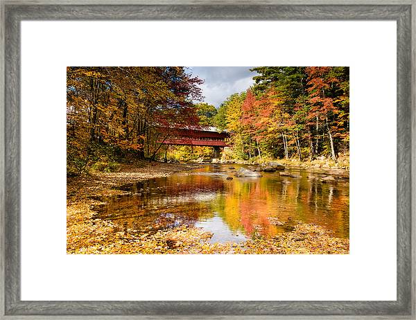 Along The Swift River Framed Print