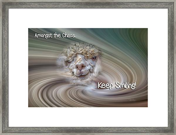 Alpaca Smile Framed Print