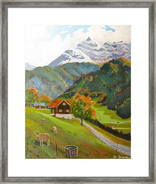 Alpine Farm Near Buerglen In Canton Uri Framed Print
